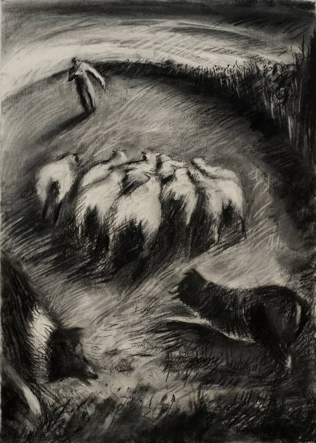 Ron Fouracres rounds up sheep with his dog (Willow charcoal drawing) (JPG, 59Kb)